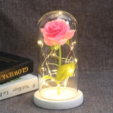 Beauty And The Beast Rose Forever Preserved Pink Red Rose In Glass Dome Romantic Gift - GoPositivo