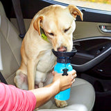 Pet Dog Water Bottle - GoPositivo