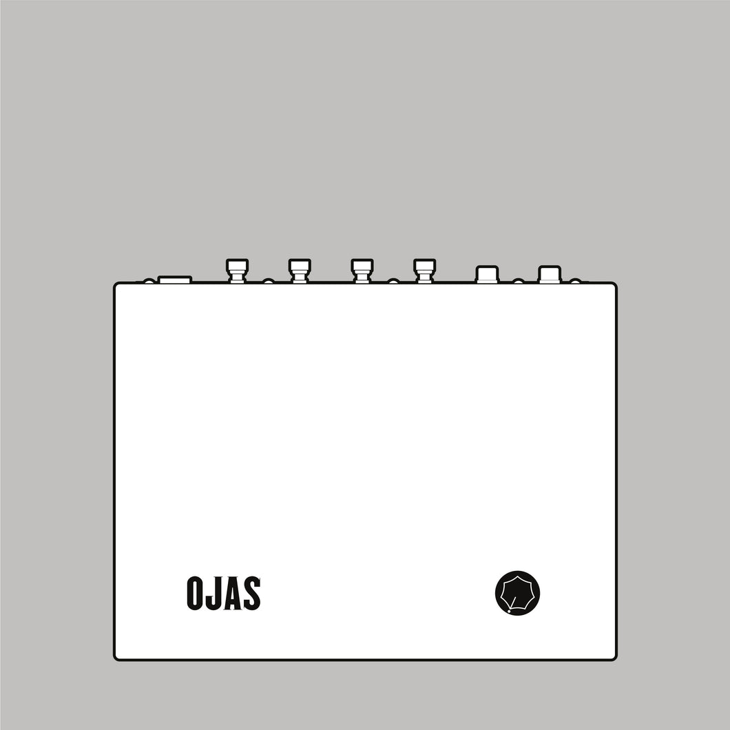 Ojas Class D 15 WPC Power Amplifier