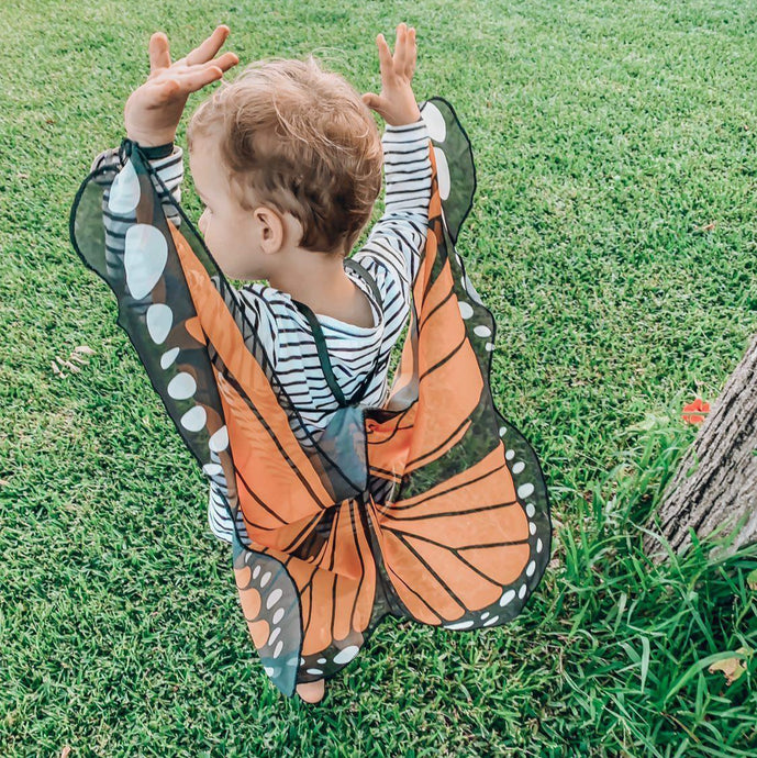 The Boy and the Butterfly + Monarch Wings