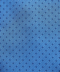 Blue Micro Dot Neck Tie
