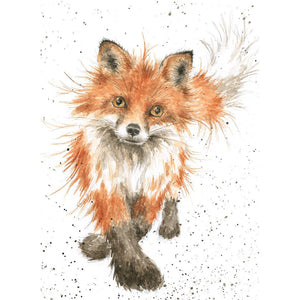 Sly Fox Card
