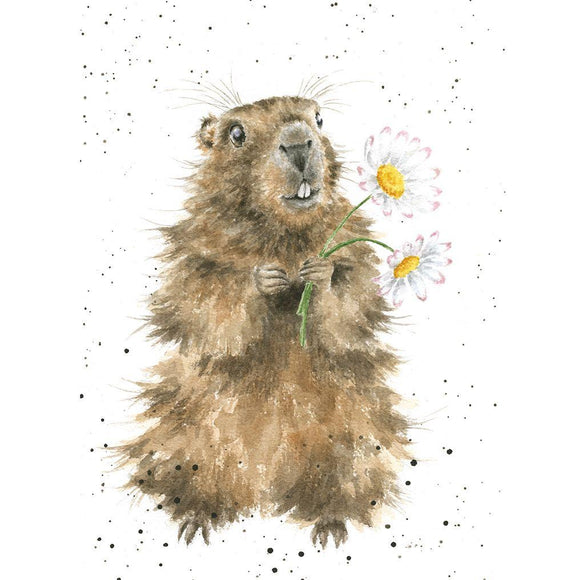 Groundhog and Daisy Card