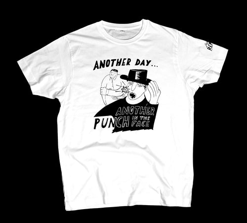 Another day, another punch in the face shirt (Men's)