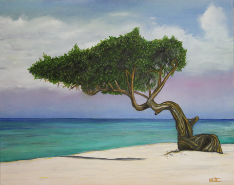 Aruba National Tree Giclee Canvas Print