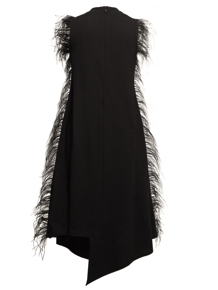 Black Feather Trim Dress