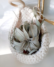 Load image into Gallery viewer, Crochet Plant Accessories
