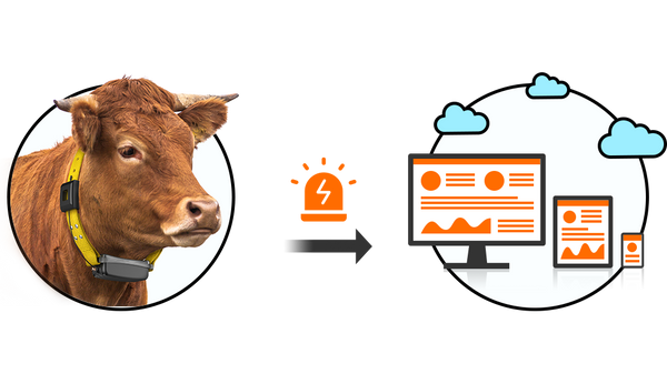 Smart Cattle Tracker