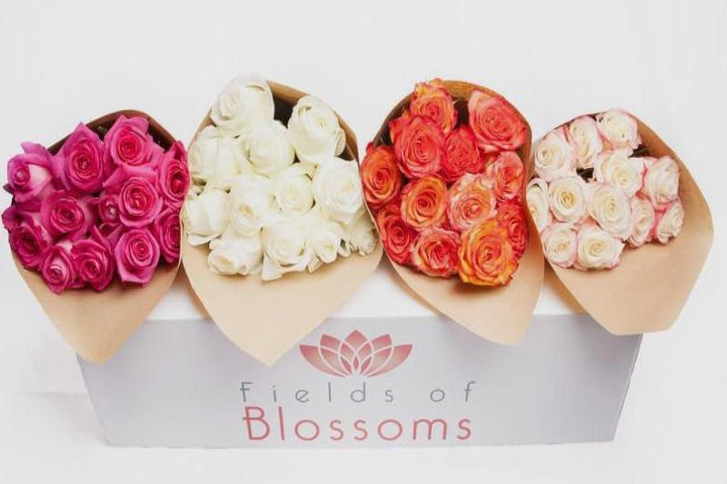 Luxury Ecuadorian Roses Arrangements on Florist Box