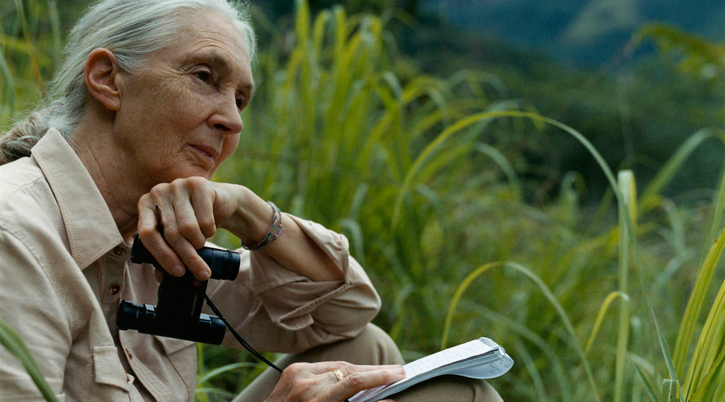 Jane Goodall - Rewind the Future