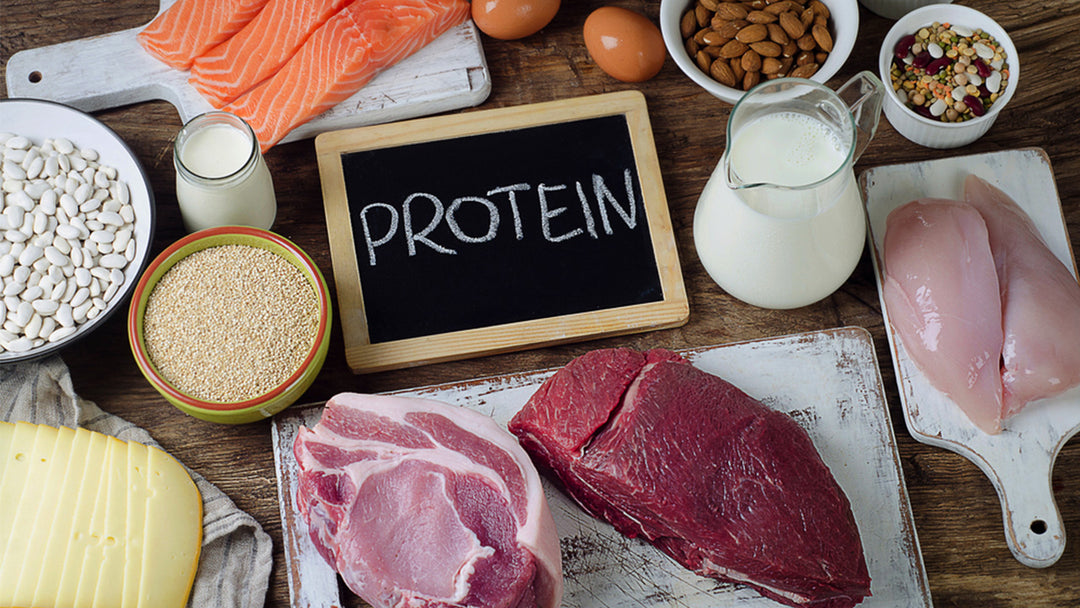20 ways to increase protein intake