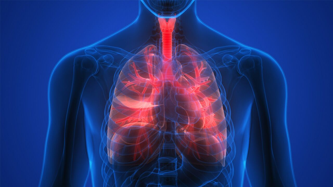 Bronchiolitis and bronchitis lung infections