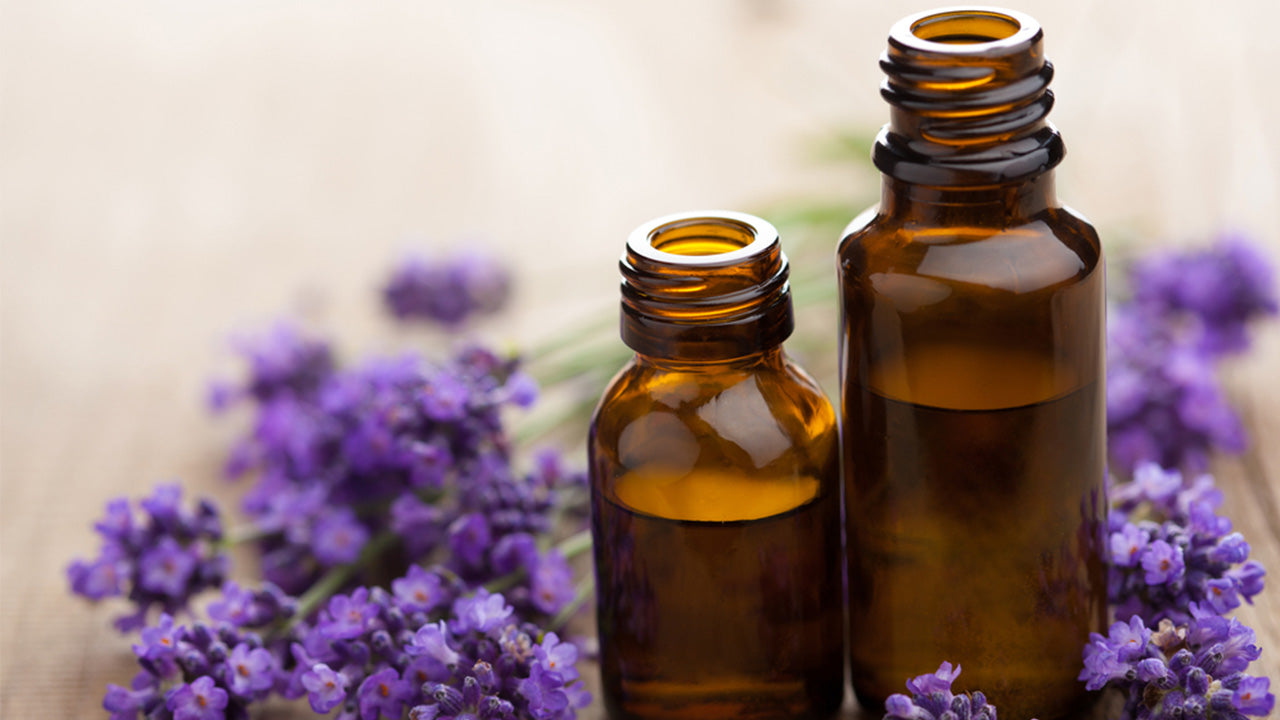 Learn how to use lavender in cooking and for health benefits.