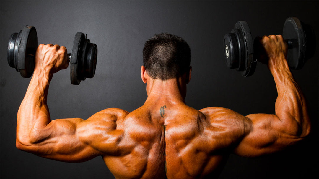 man flexing back muscles holding dumbbells
