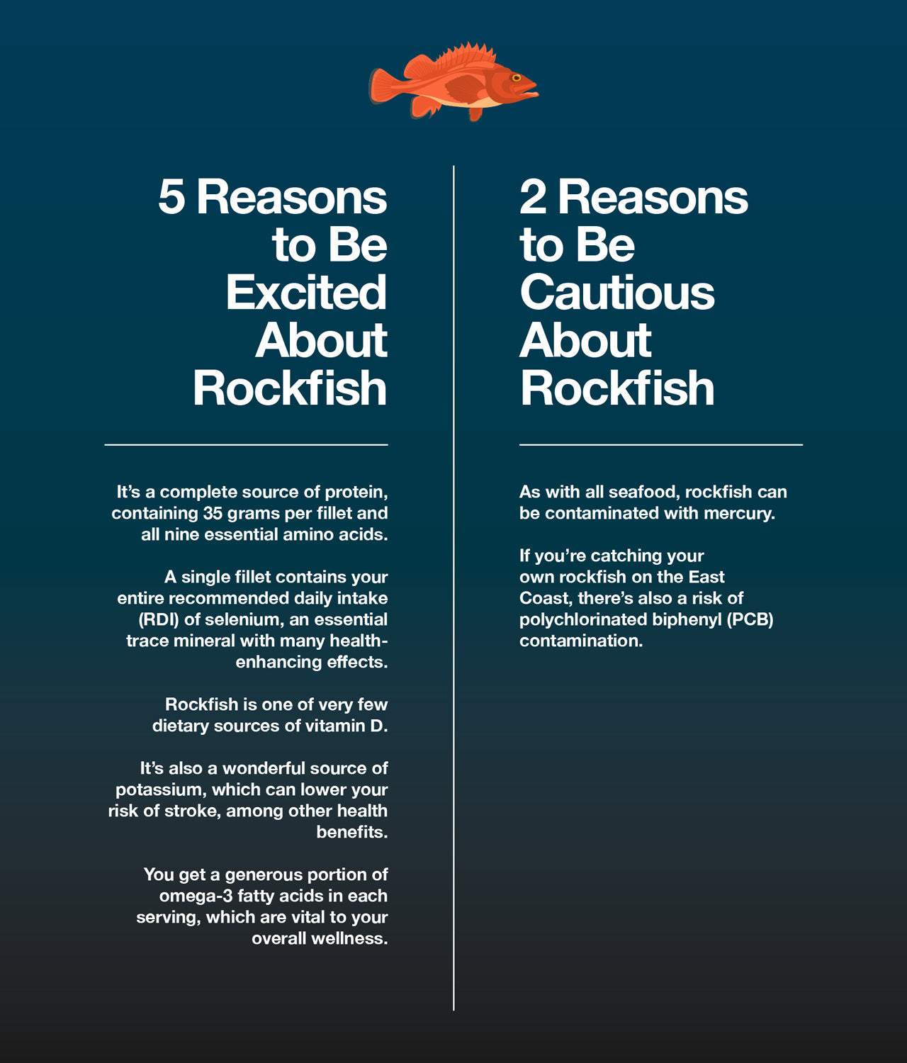 Here are 5 reasons to be excited about rockfish and 2 reasons to be cautious about it.