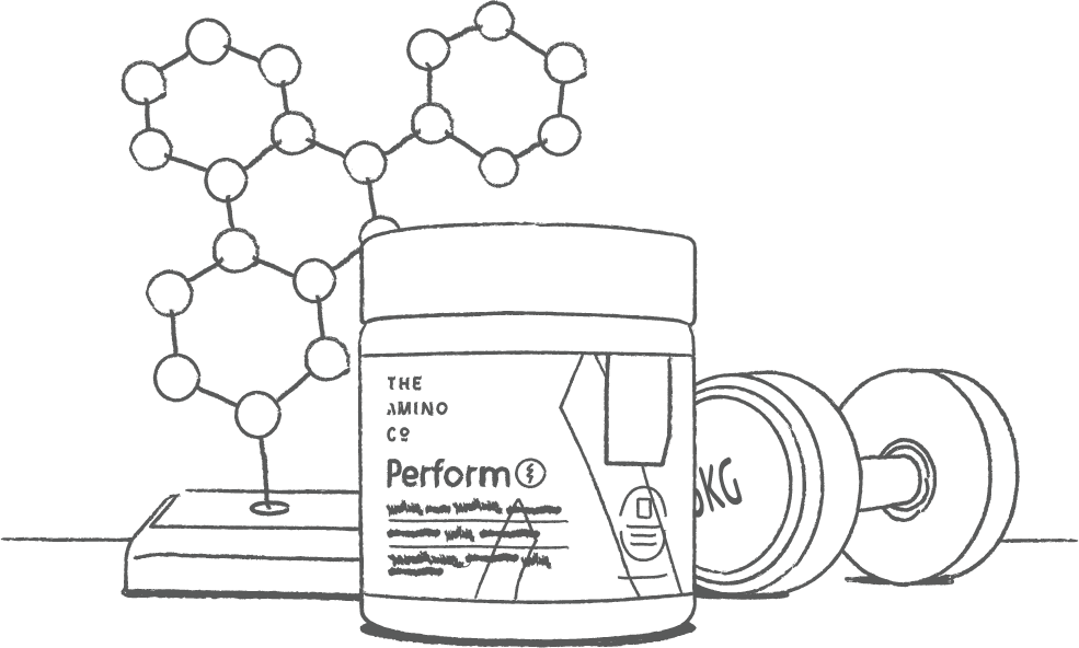 Amino Company scientists start working on bringing the best amino acid products to the market