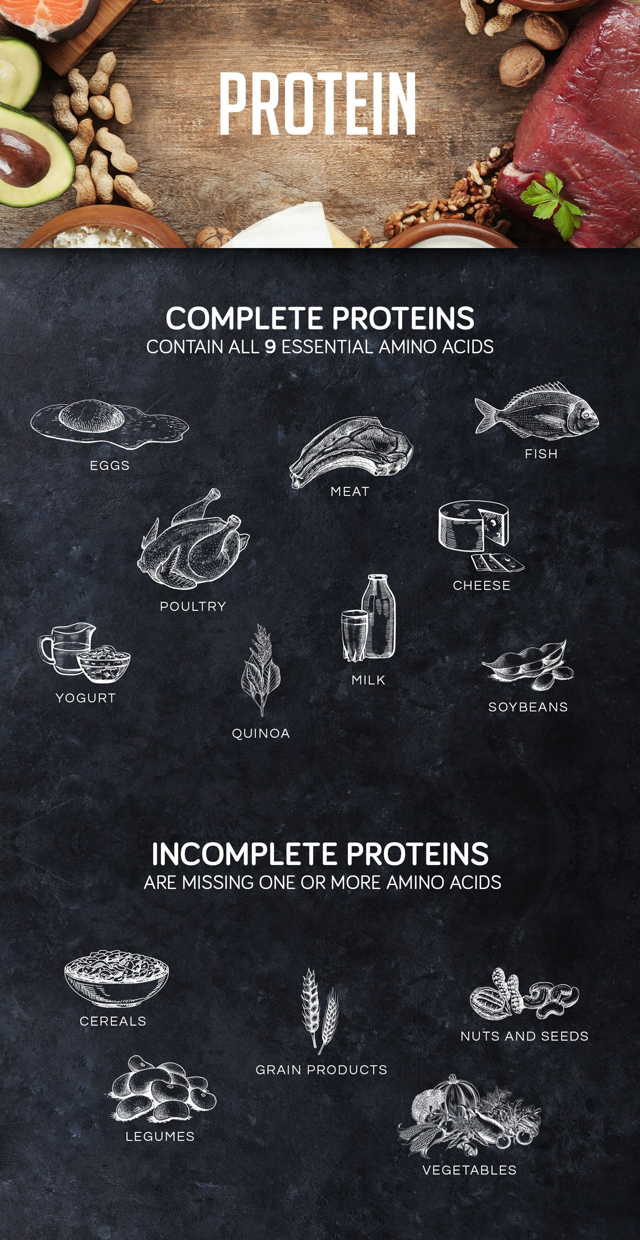 Best Protein to Eat