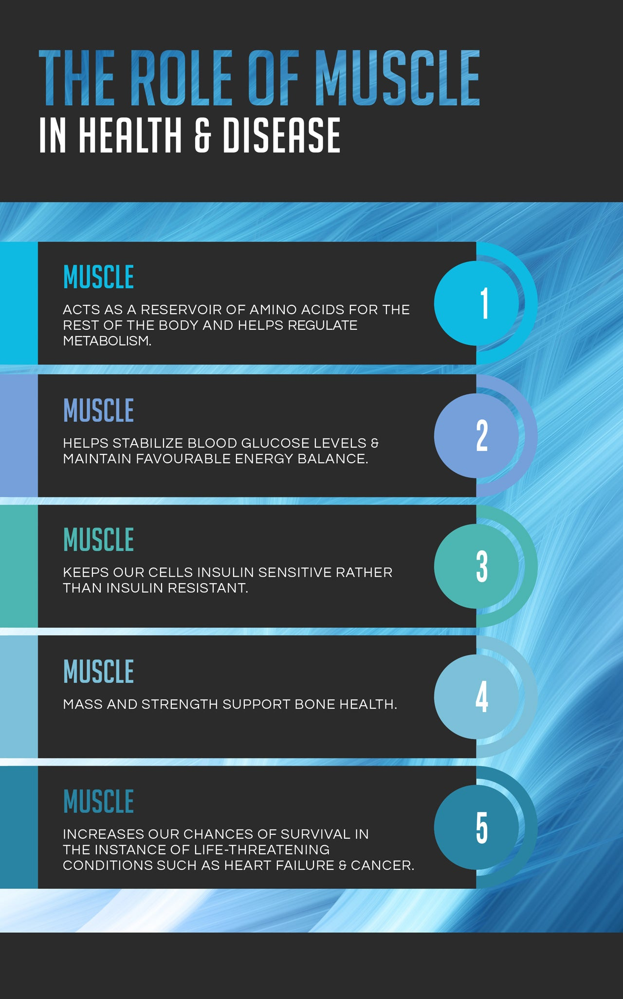 The Role of Muscle in Health and Disease