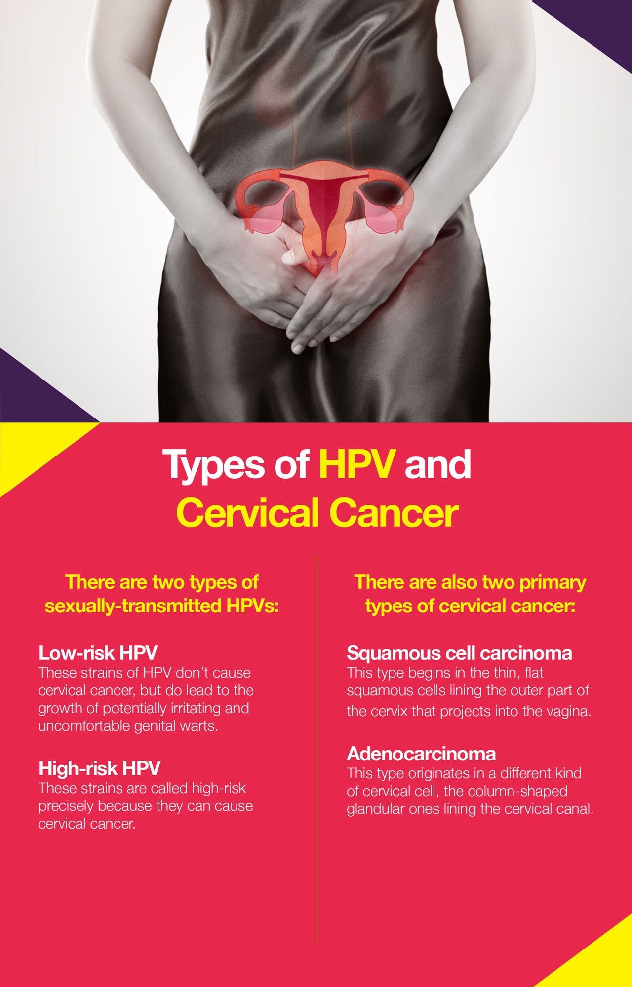 Here are the types of HPV and cervical cancers
