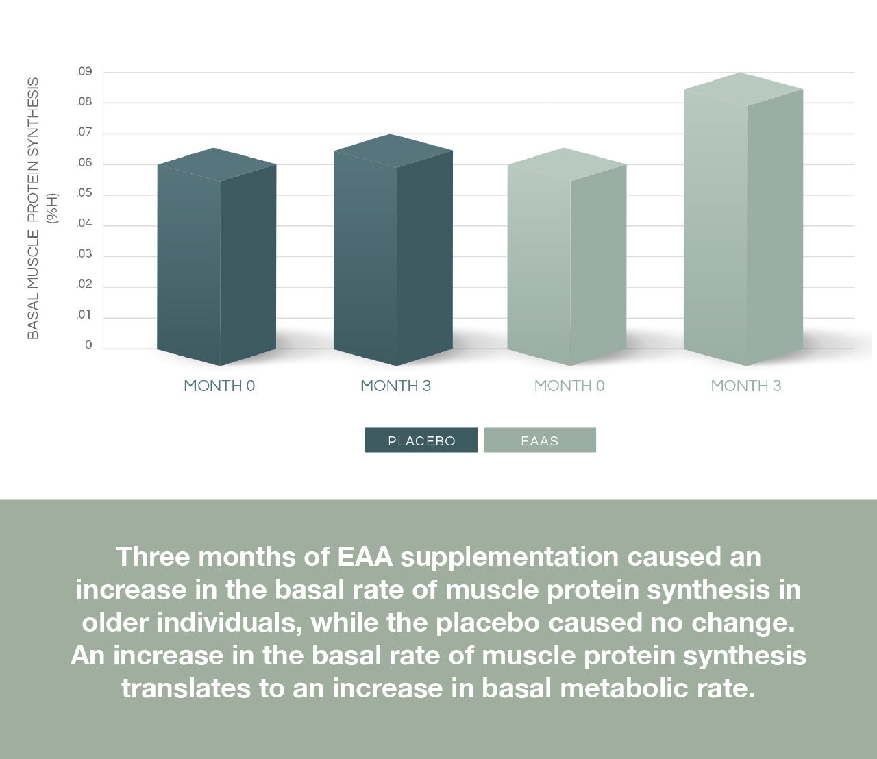 Basal muscle synthesis