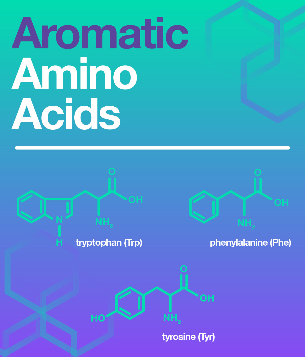 the structure of the aromatic amino acids