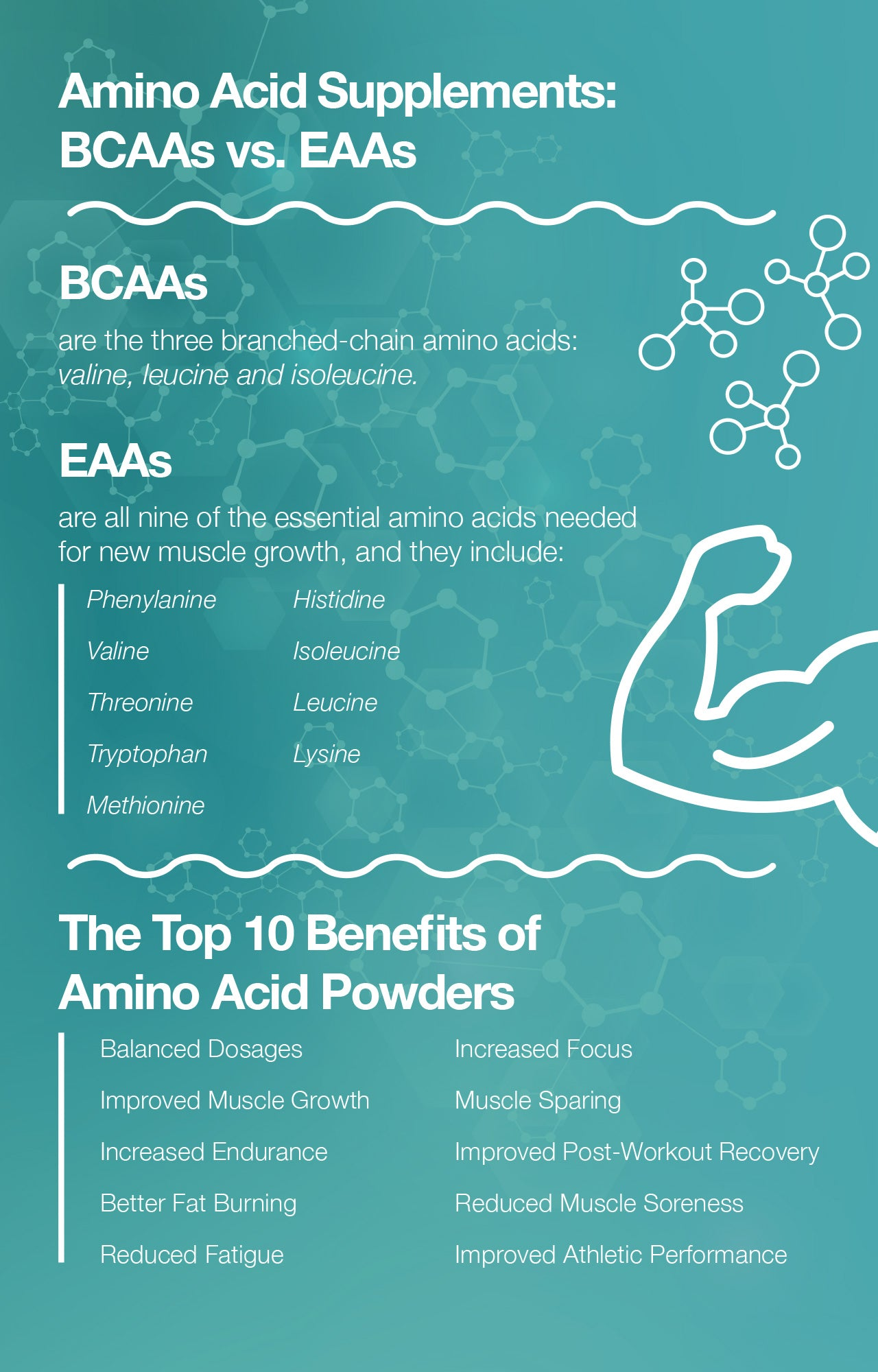Top 10 benefits of amino acid powders.