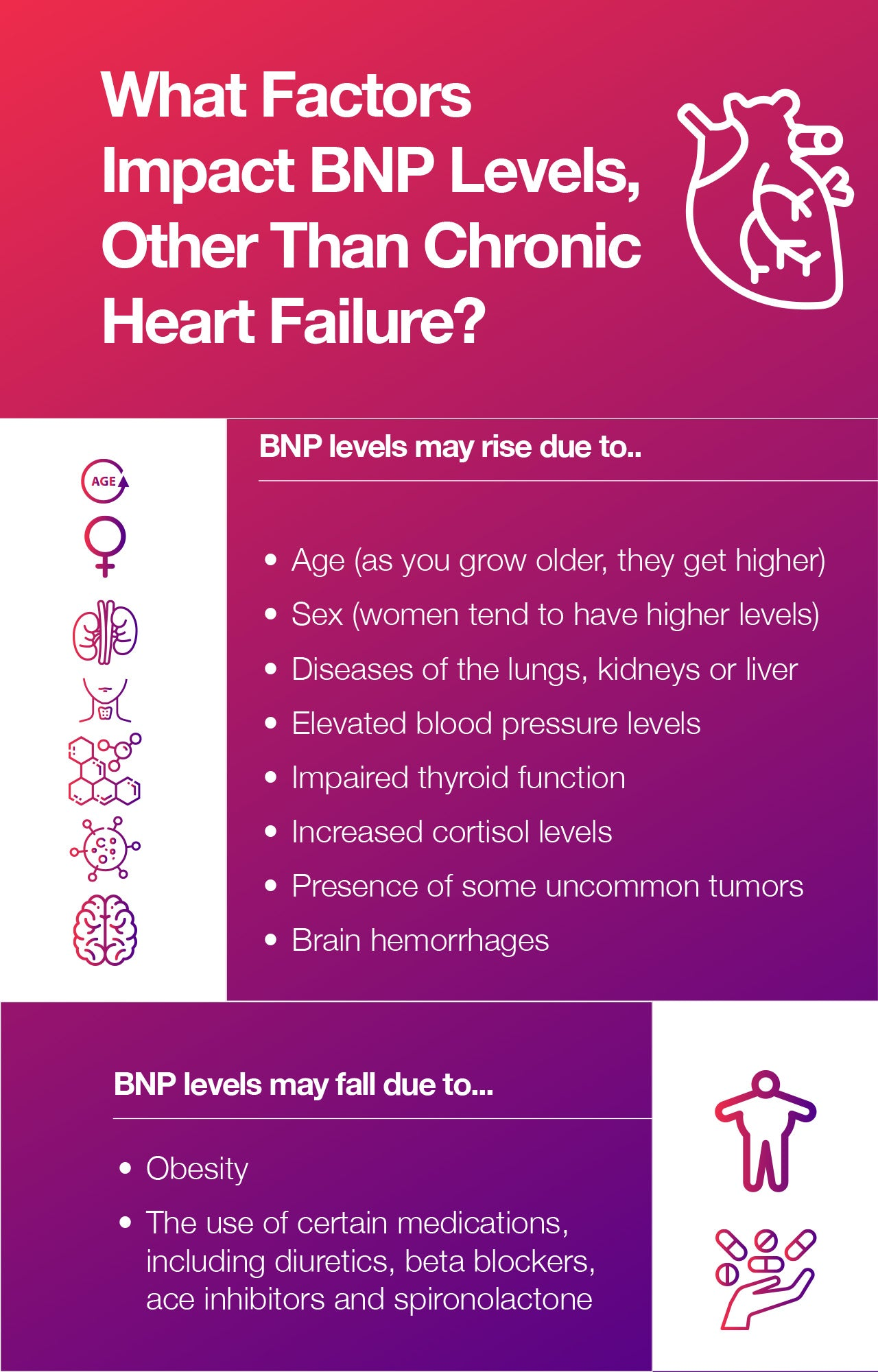 What Factors Impact BNP Levels, Other Than Chronic Heart Failure?