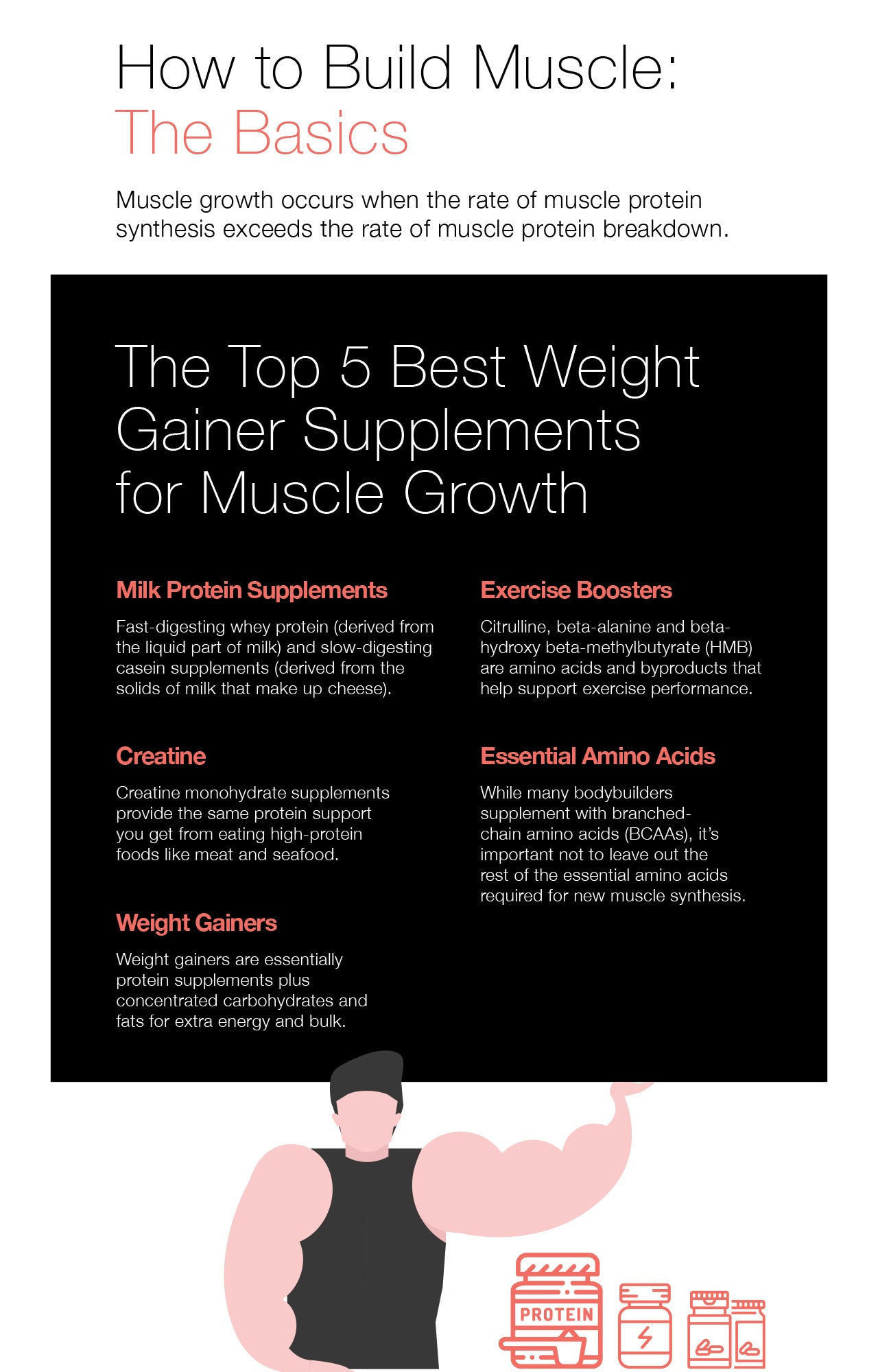 The Top 5 Best Weight Gainer Supplements for Muscle Growth