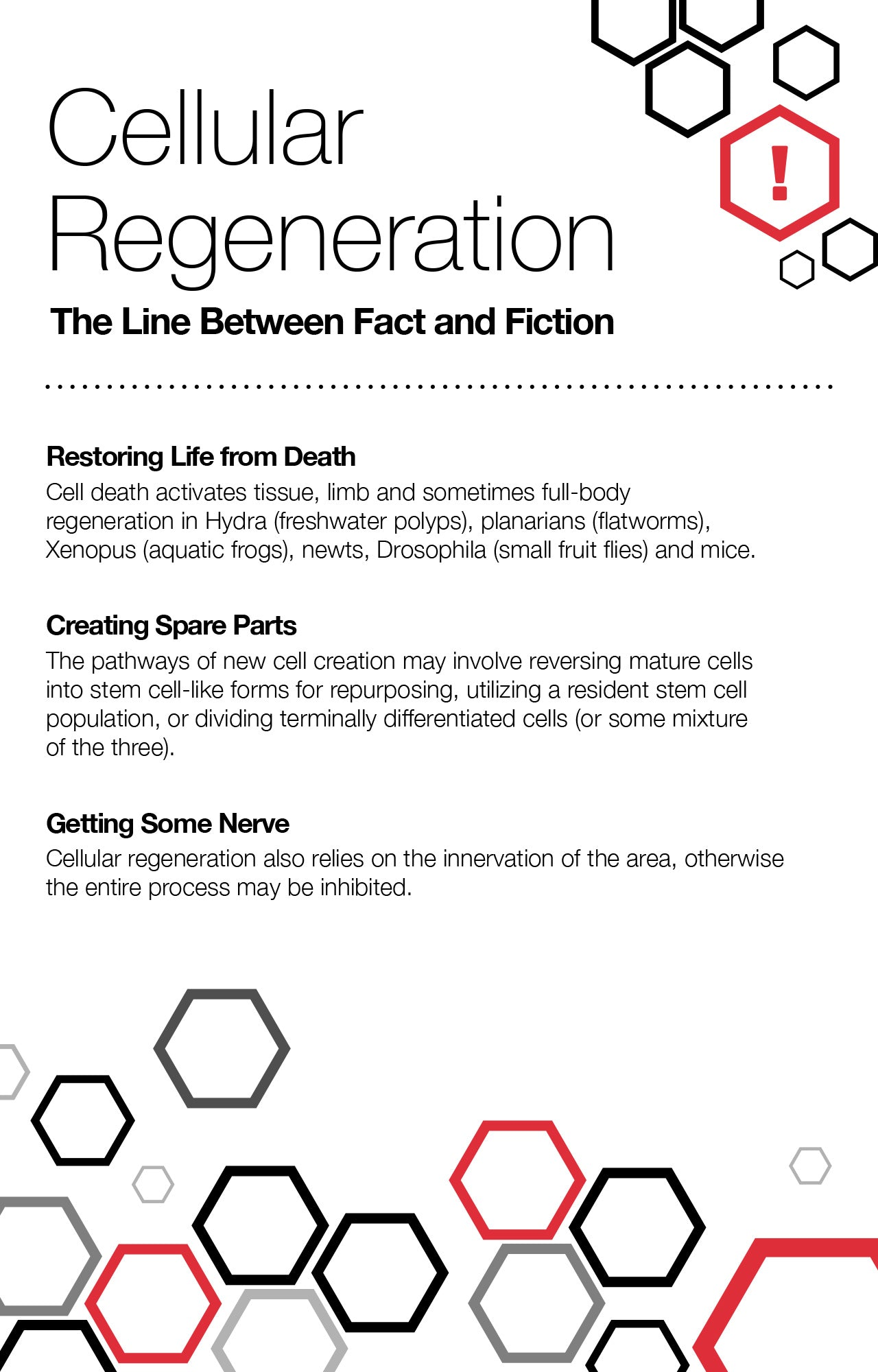 Cellular Regeneration: The Line Between Fact and Fiction