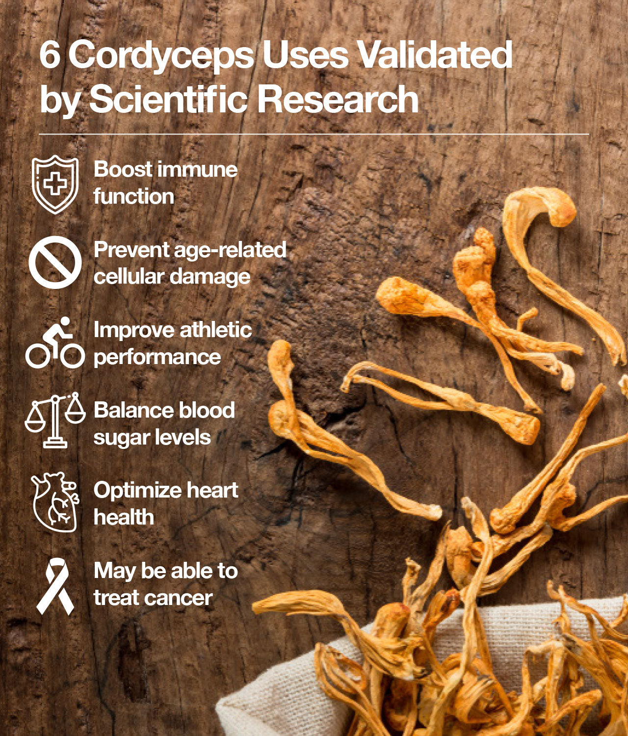 6 Cordyceps Uses Validated by Scientific Research