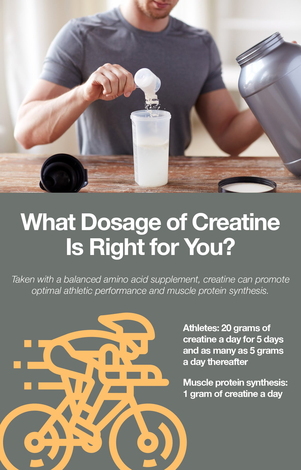 Creatine has beneficial effects on athletic performance