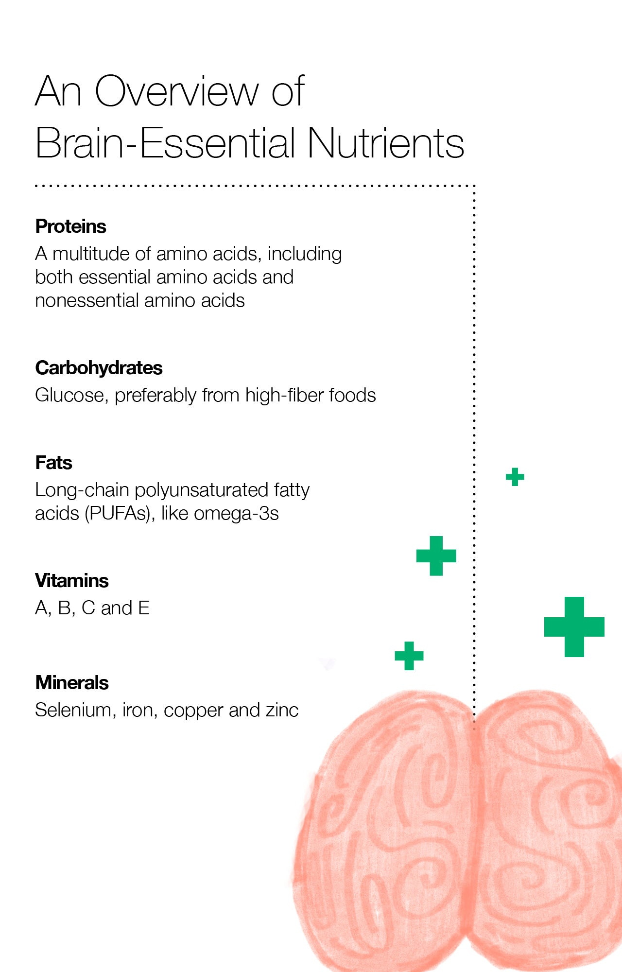 An Overview of Brain-Essential Nutrients