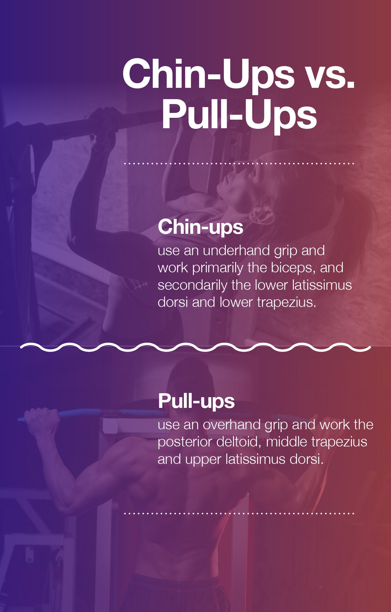 Difference between chin-ups and pull-ups