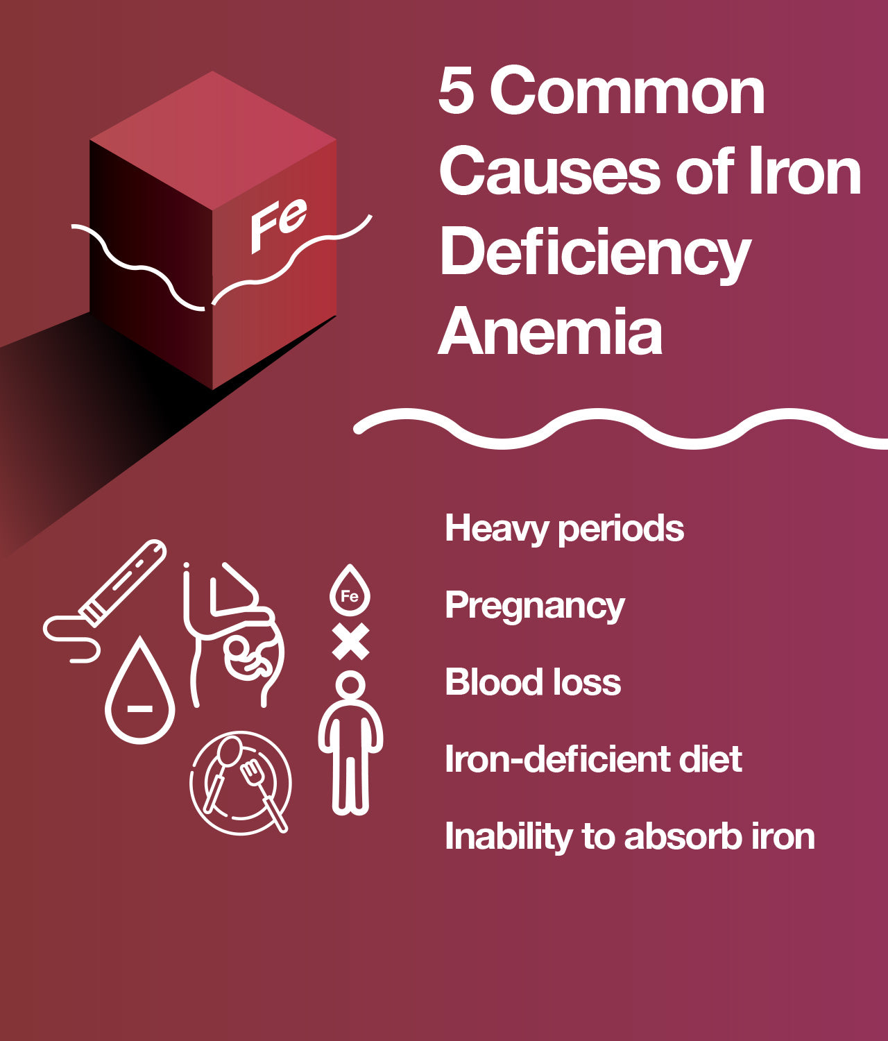 Causes of iron deficiency anemia