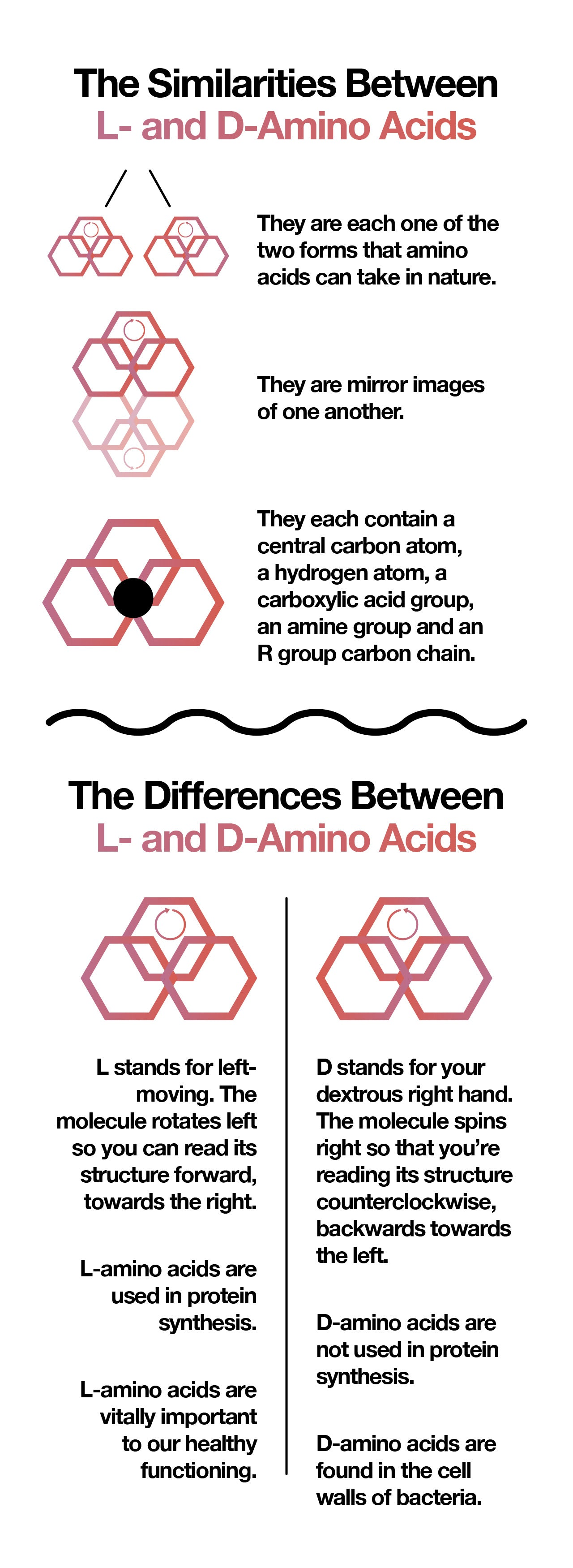 The difference between L- vs. D-amino acids.