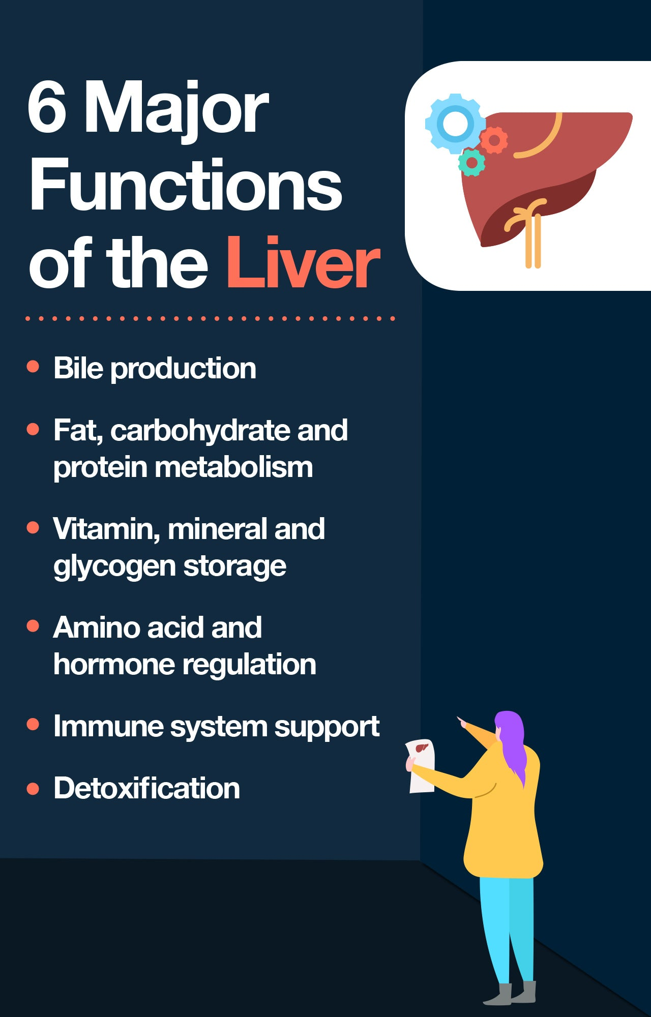 Primary functions of the liver