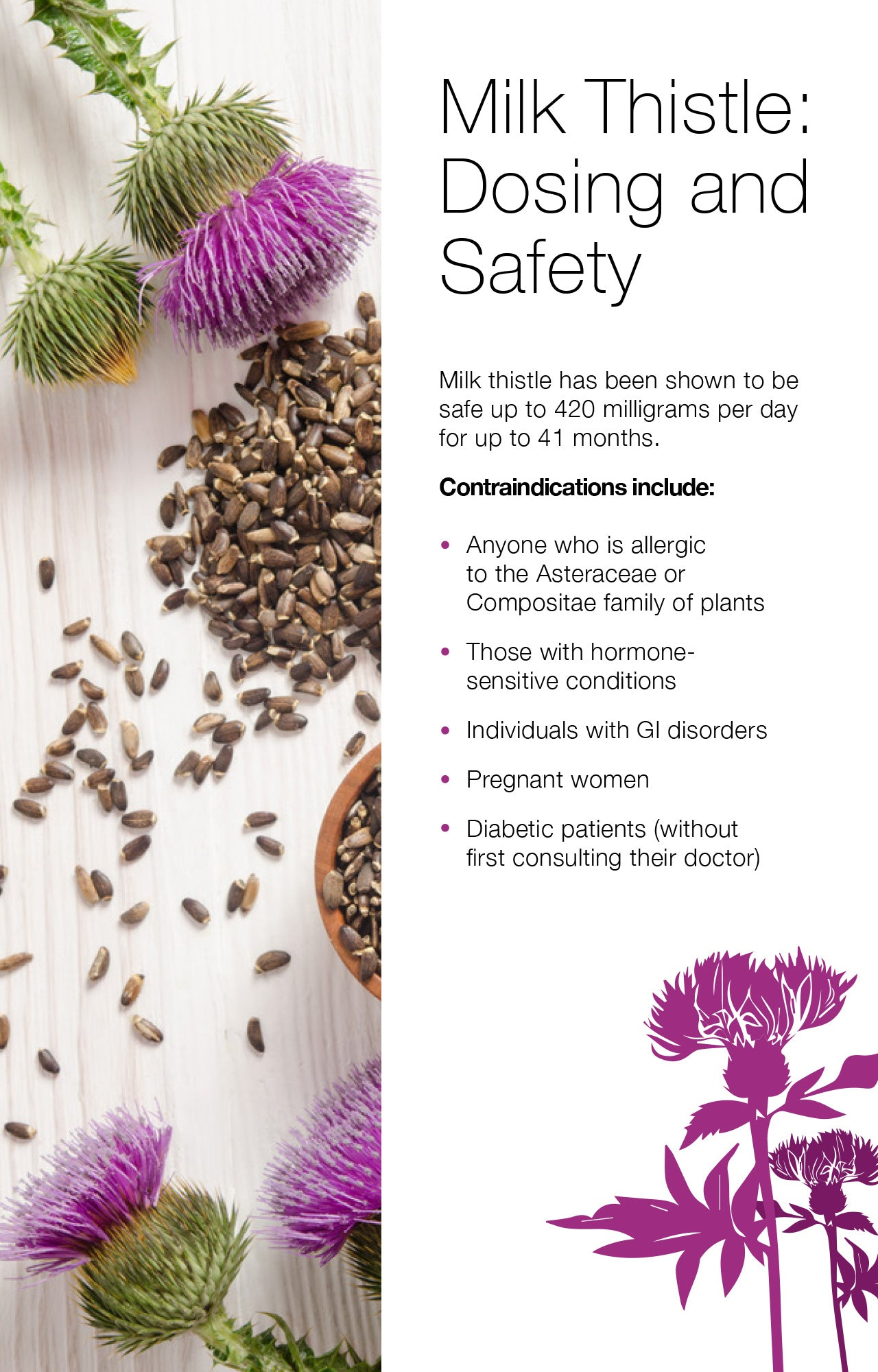 Milk Thistle: Dosing and Safety