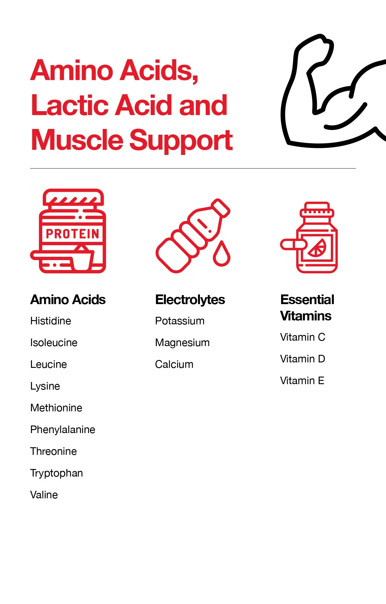 Amino Acids, Lactic Acid and Muscle Support