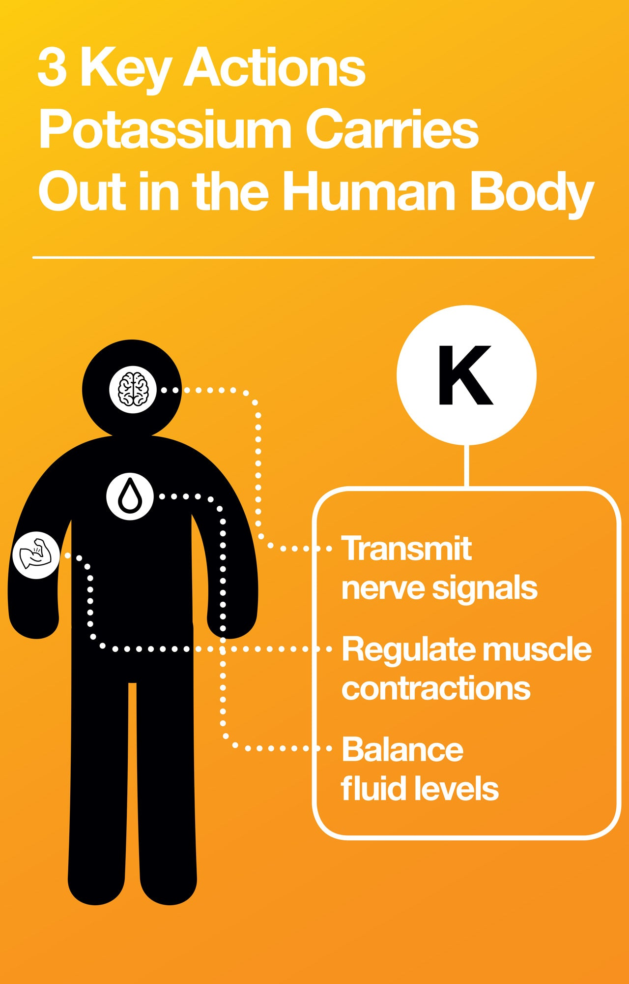 Learn what potassium is and why we need it.