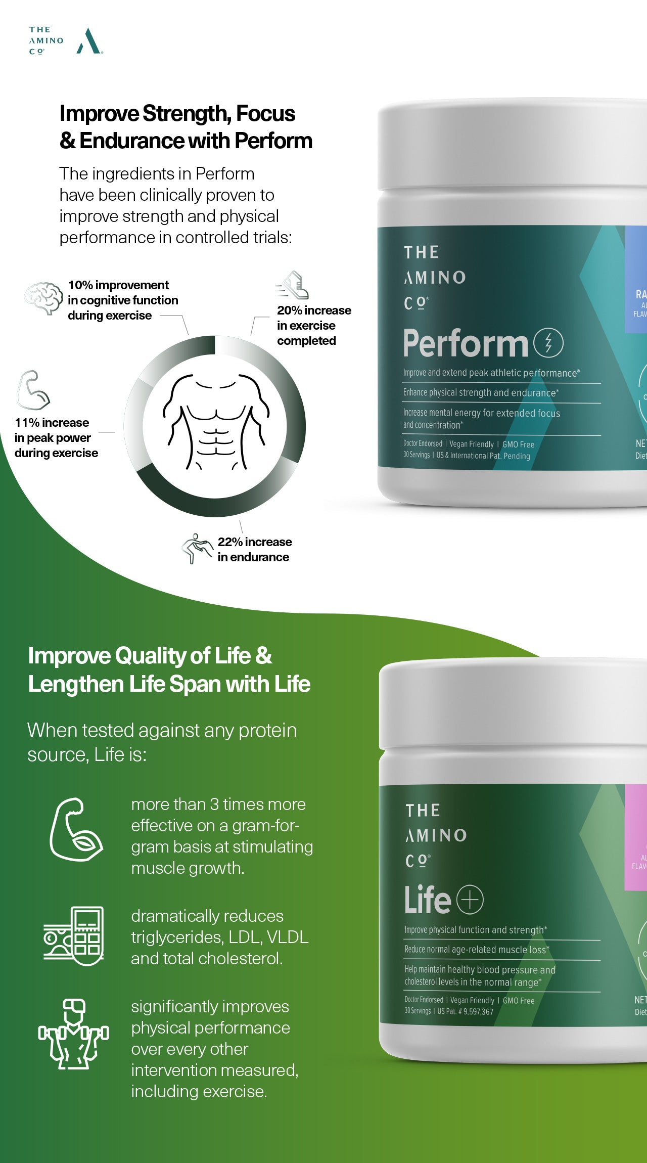 Amino Co supplement benefits