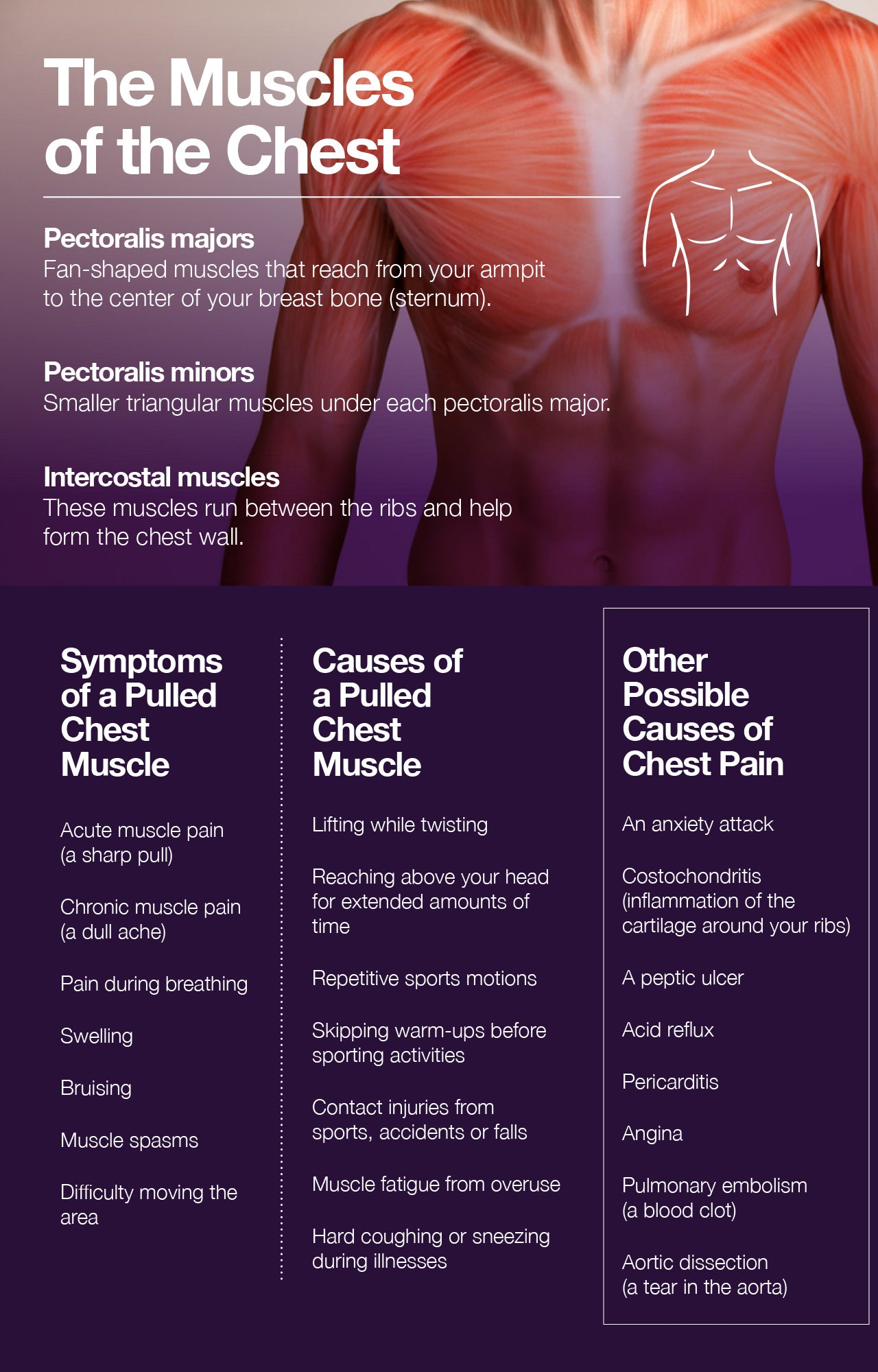 Pulled chest muscle: signs, causes, and treatment.