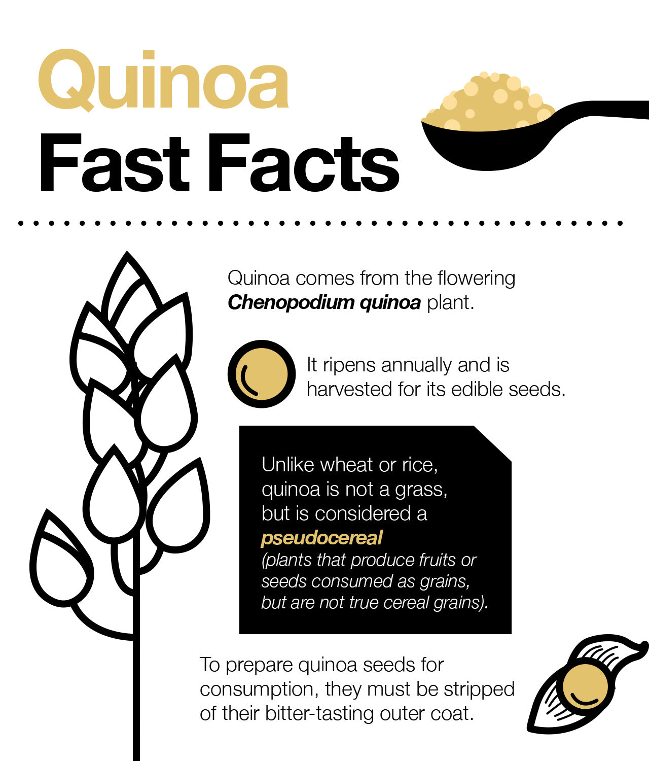 Is quinoa a complete source of protein?