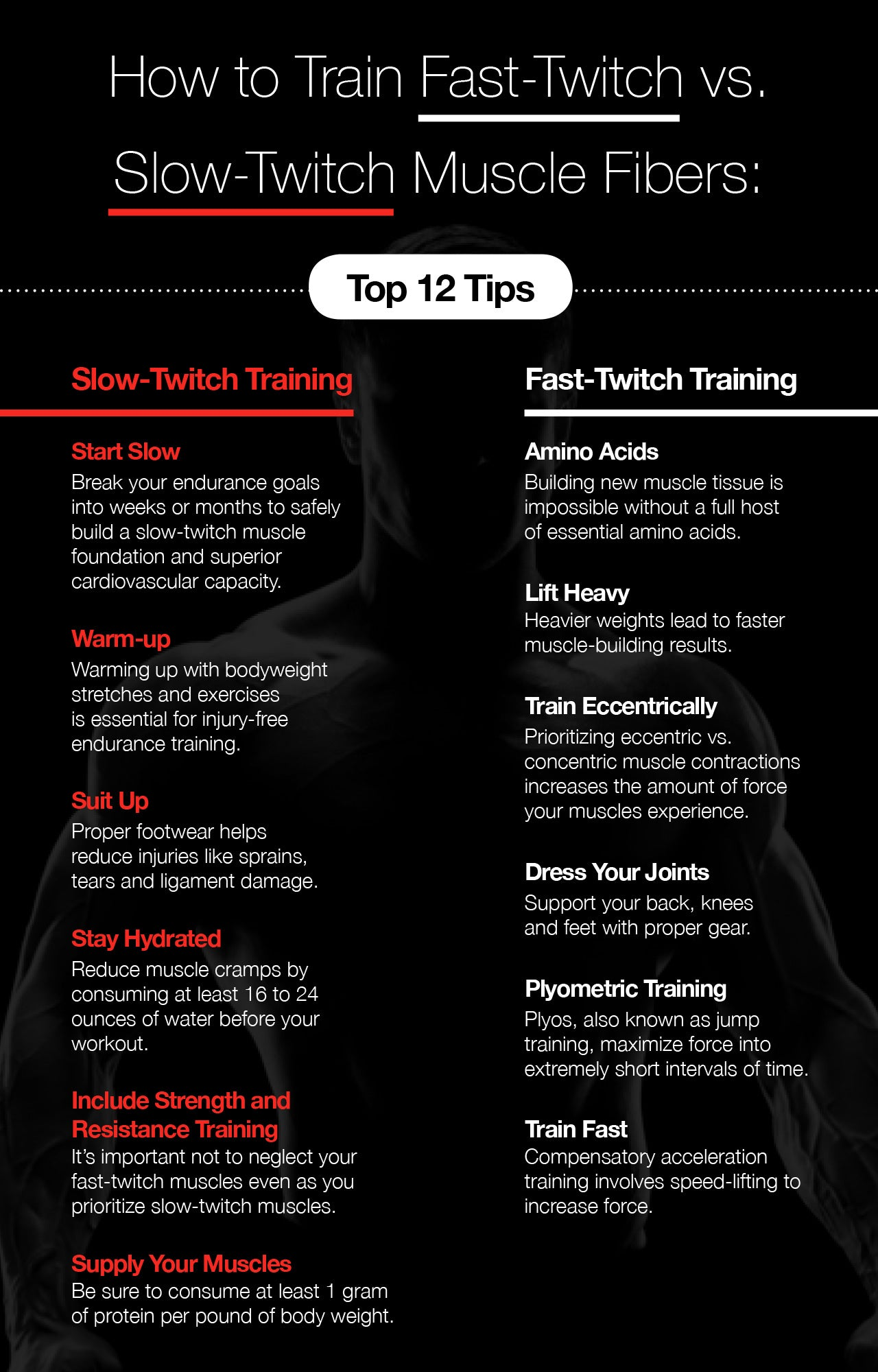 How to Train Fast-Twitch vs. Slow-Twitch Muscle Fibers: Top 12 Tips