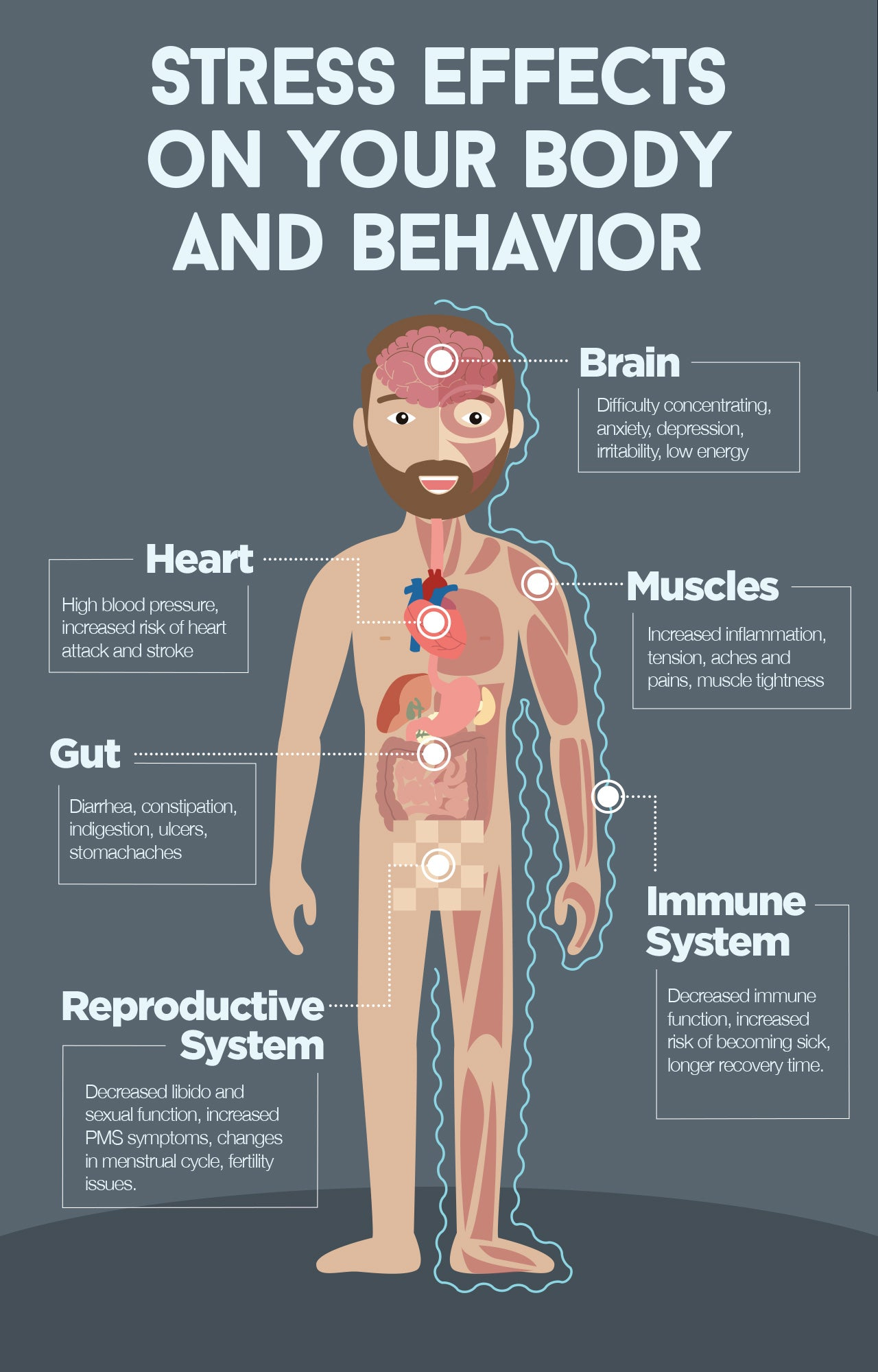 Stress effects on your body and behavior