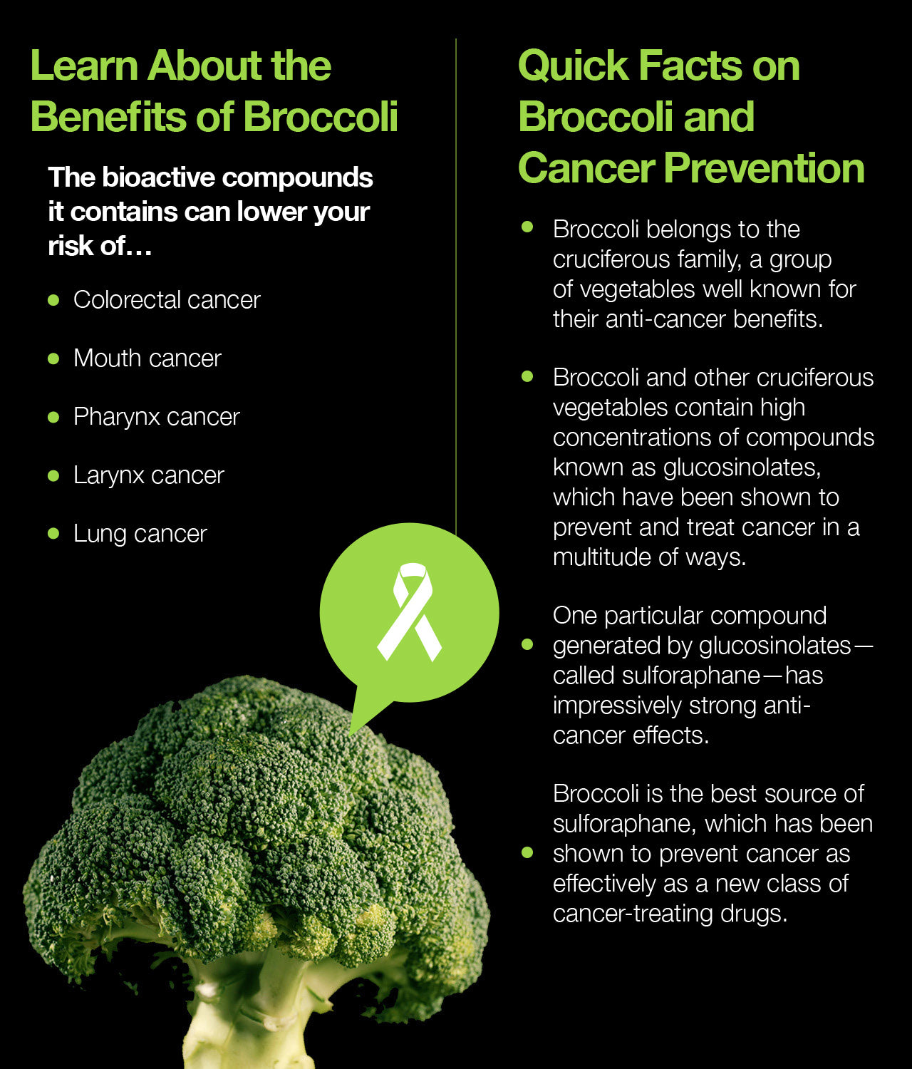 Learn About the Benefits of Broccoli