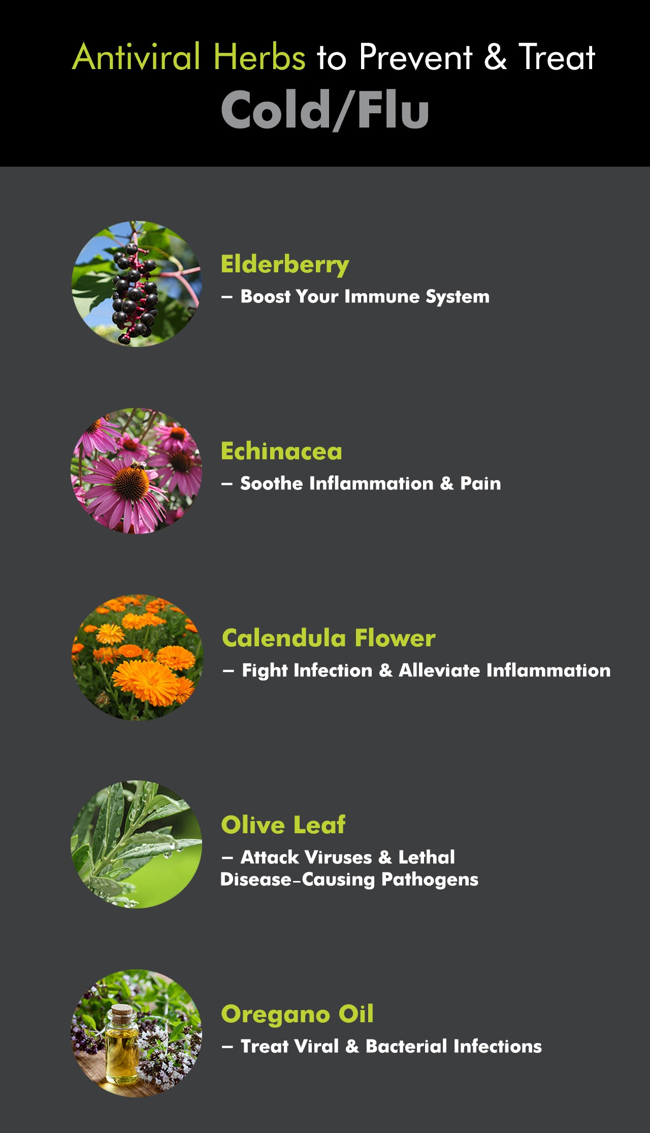 Even with the best of intentions, it's not easy to avoid contracting the cold or flu. And with so many health aids out there, choosing the best remedies for flu and cold relief can be a hassle. Although conventional methods for flu and cold treatment are more prevalent, consider these natural remedies for cold and flu.