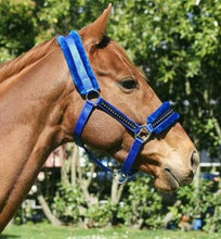Load image into Gallery viewer, Crystal Fleece Halter 6 Colours