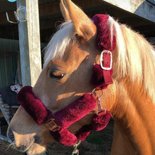 Load image into Gallery viewer, CLEARANCE PRICE! R2R Fluffy Halter Rose Gold Fittings BURGUNDY