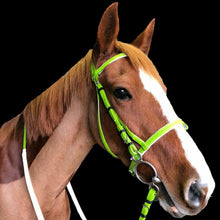 Load image into Gallery viewer, CLEARANCE SALE! PVC Bridle with Reins LIME