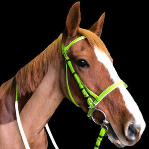 CLEARANCE SALE! PVC Bridle with Reins LIME